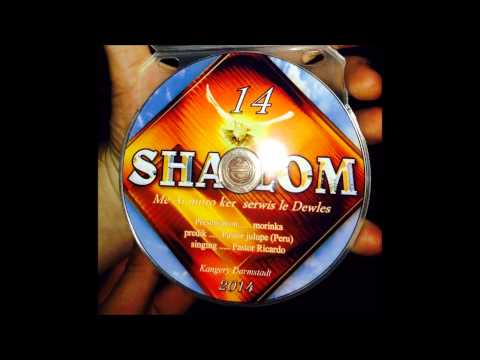 Ricardo Kwiek - Shalom 14 Track 5 So Many Days ! Romane Gila