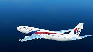 Repeat youtube video Segun las cartas lo que paso con el avion de Malaysia Airlines.