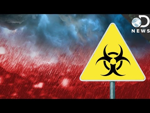 What Ever Happened To Acid Rain?