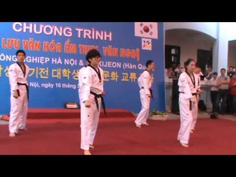 SV Hàn Quốc múa võ taekwondo trên nền nhạc Gangnam Style tại Việt Nam