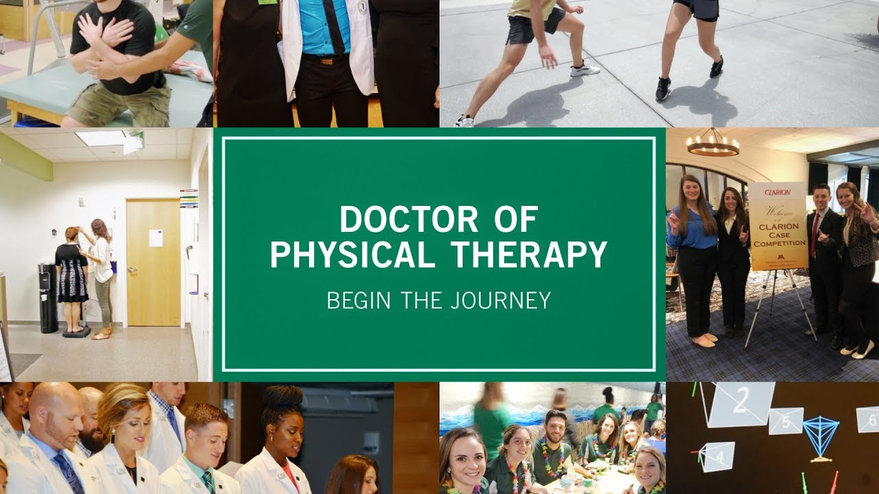 Doctor Of Physical Therapy Admissions Usf Health