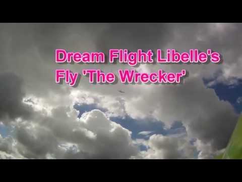 Dream Flight Libelle chat | Model Flying