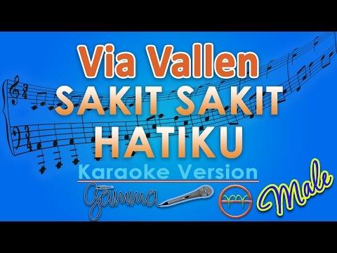 Via Vallen - Sakit Sakit Hatiku MALE (Karaoke Tanpa Vokal) by GMusic