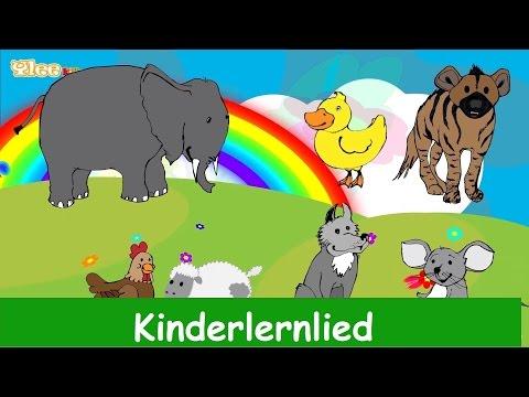 die-lieder-der-tiere---kinderlied-in-deutscher-sprache---sing-mit-yleekids