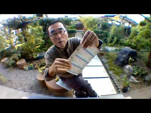 GoToイートキャンペーン静岡県の森林浴】赤富士と青富士の食事券を買ってきた。ファミリーマートは1人買っていた。ローソンは誰も買ってない。クレジットカードでTポイントもポンタもつかない。引換票番号入力