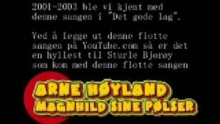 Magnhild sine pølser - Arne Høyland