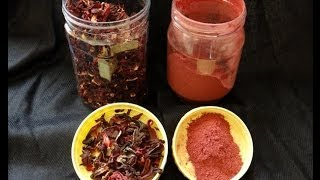 Hibiscus for Skin, Hair & Health