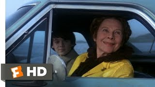 Harold and Maude (5/8) Movie CLIP - It