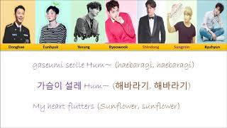 Super Junior - Sunflower