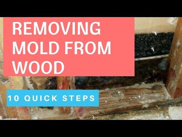 Proven Ways To Remove Mold From Wood How To Remove Mold Inside Walls Youtube
