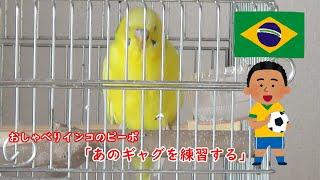 ブラジルワールドカップを記念して、サバンナ八木さんのギャグを教えて...