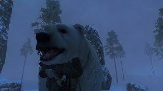 Stalker Online 🔴 Отстрел Полярных собак и Белых мишек! 🔴