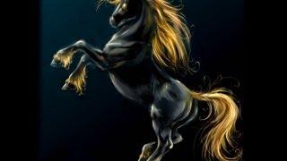 La Leyenda Del Unicornio