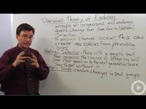 Darwins Theory of Evolution