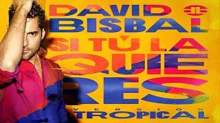 David Bisbal - Si tu la quieres - Version Tropical (New Salsa Nueva Hit 2020 Official Audio)