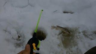 Зимова риболовля Тавда оз.Халтуріне