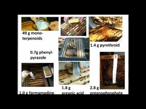 Pesticides in and around the Hive