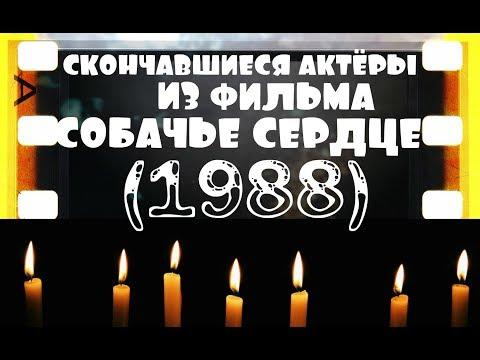 """ОНИ БЫЛИ НАШИМИ КУМИРАМИ СОБАЧЬЕ СЕРДЦЕ """"1988"""""""