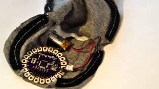 Electric Eel: Digital Condom Prototype