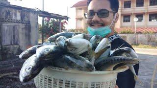 Cari ikan dari KB ke Pasar Bisik
