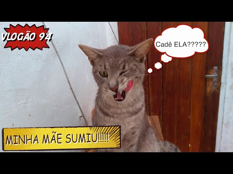 2.398 - VLOGÃO 94 (MINHA MÃE SUMIU!...