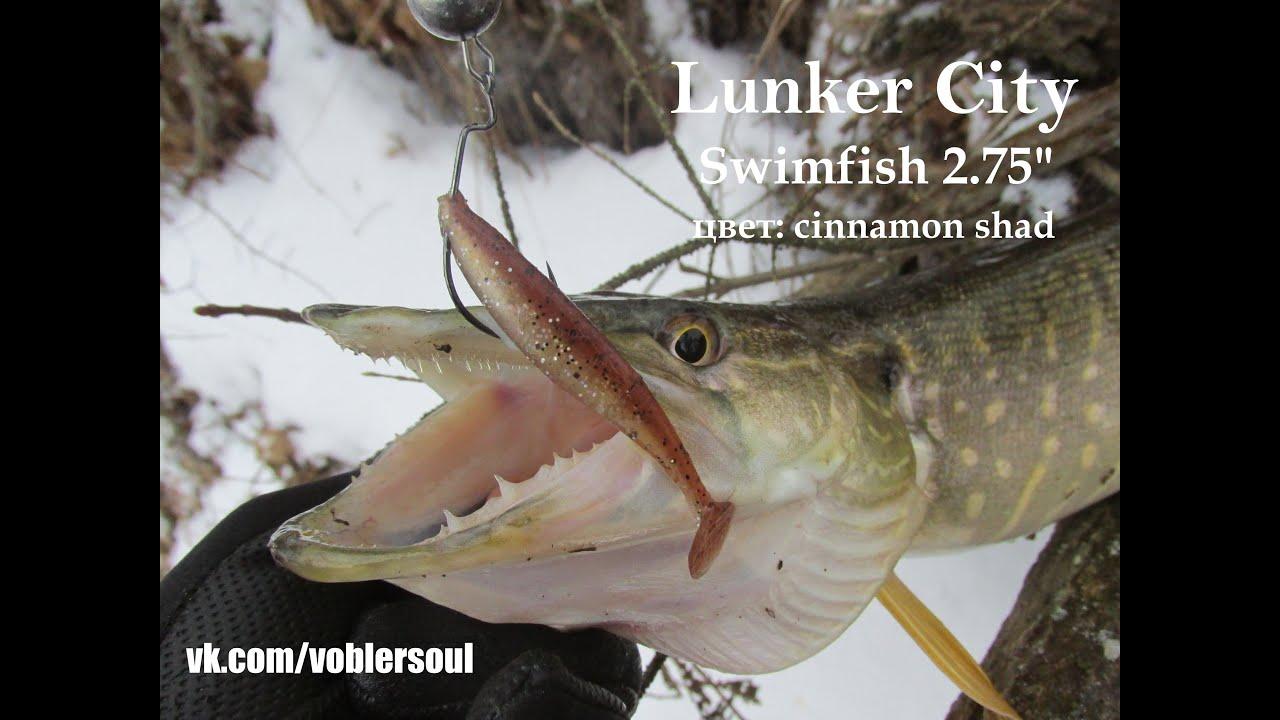 Swimfish lunker for Fin s fish