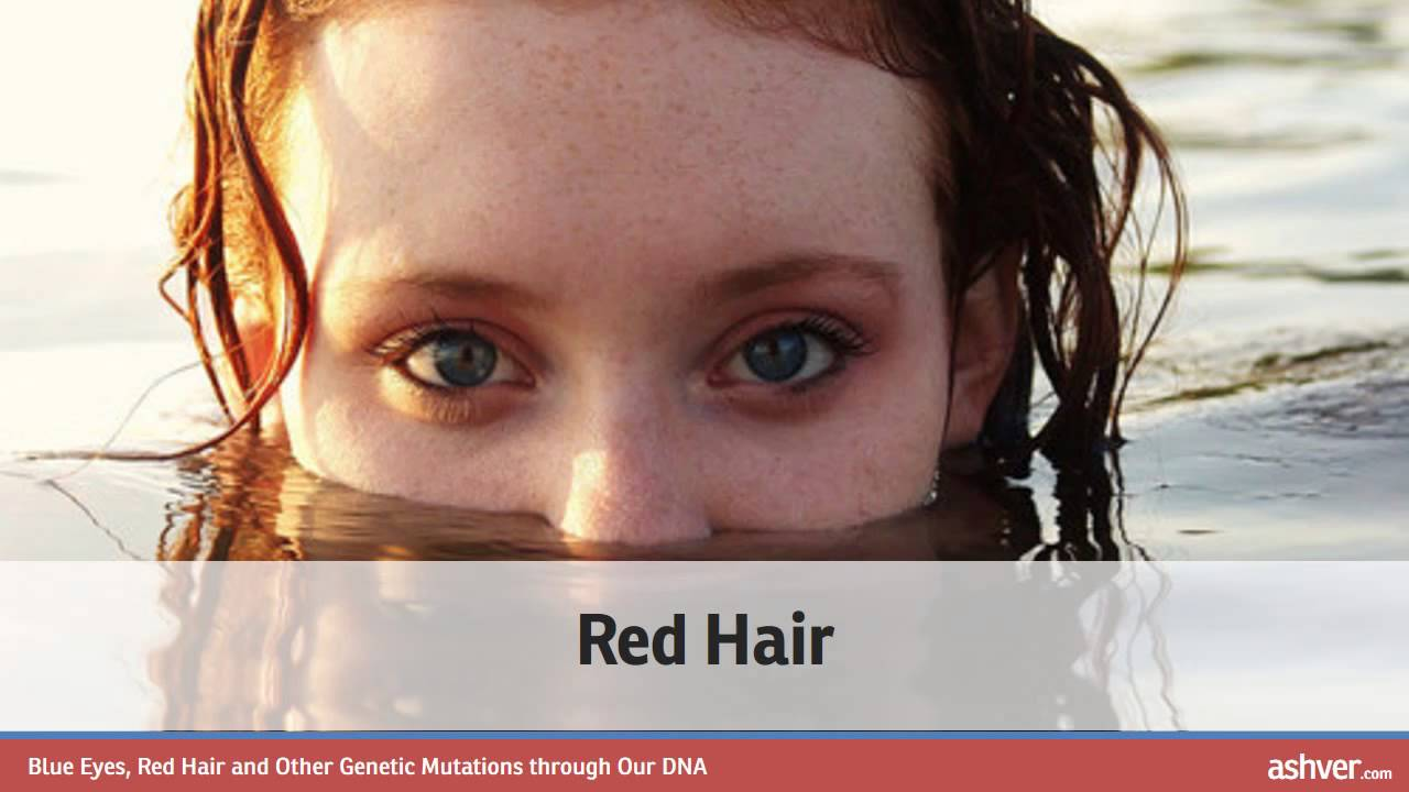 blue eyes red hair and genetic