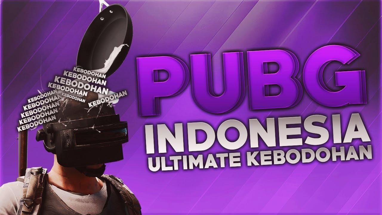 PUBG Indonesia - Ultimate Kebodohan