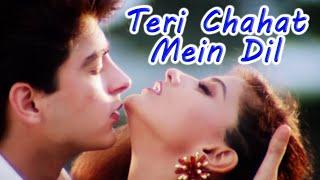 Teri Chahat Mein Dil | The Don (1995) | Sonali Bendre, Jugal Hansraj | Kumar Sanu Hits