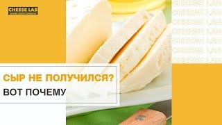 Почему не получается сыр ТОП 9 ошибок Секреты домашнего сыроделия