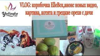 VLOG: коробочка ElleBox,анонс новинок,  картина, котята и грецкие орехи с дачи