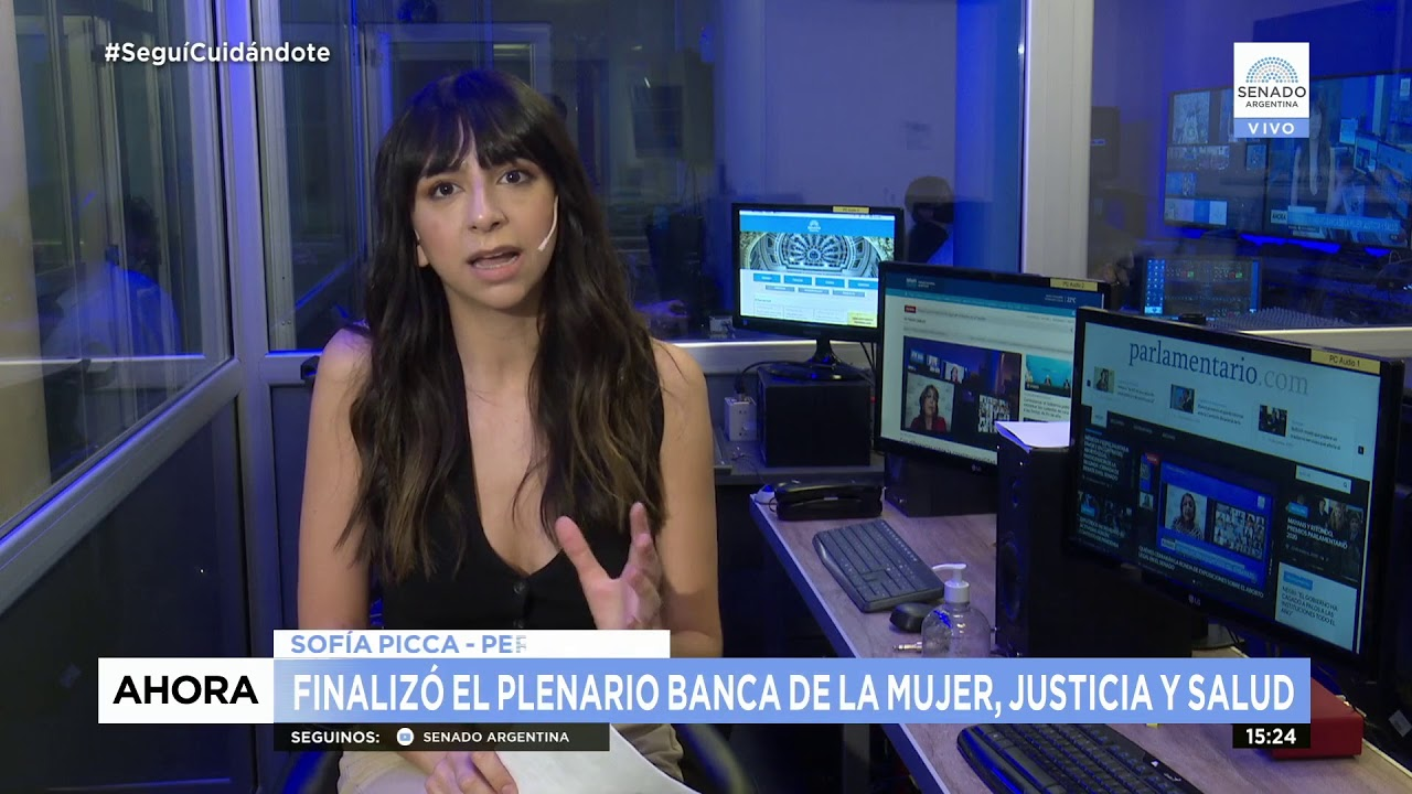 PLENARIO INTERRUPCIÓN VOLUNTARIA DEL EMBARAZO  17-12-20