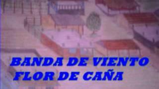MUSICA HUASTECA,BANDA DE VIENTO FLOR DE ...