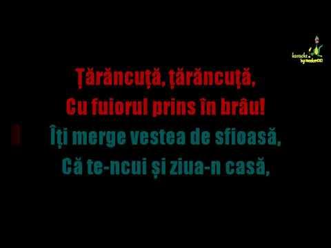 Dan Spataru - Tarancuta (Ka®aokeHD by Snooker6767)