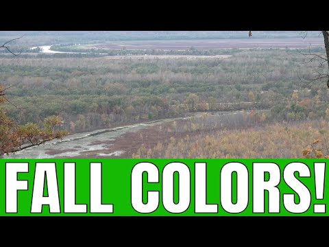 Southern Illinois Fall Colors on Pine Hills Road