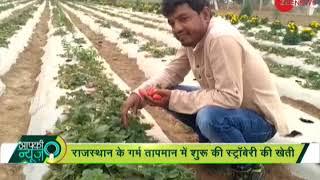 Apki News: Software engineer quits job to start strawberry farming
