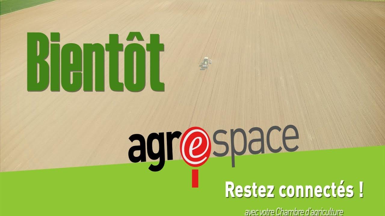 Agrespace : Le Nouveau Site Internet De La Chambre Du0027agriculture