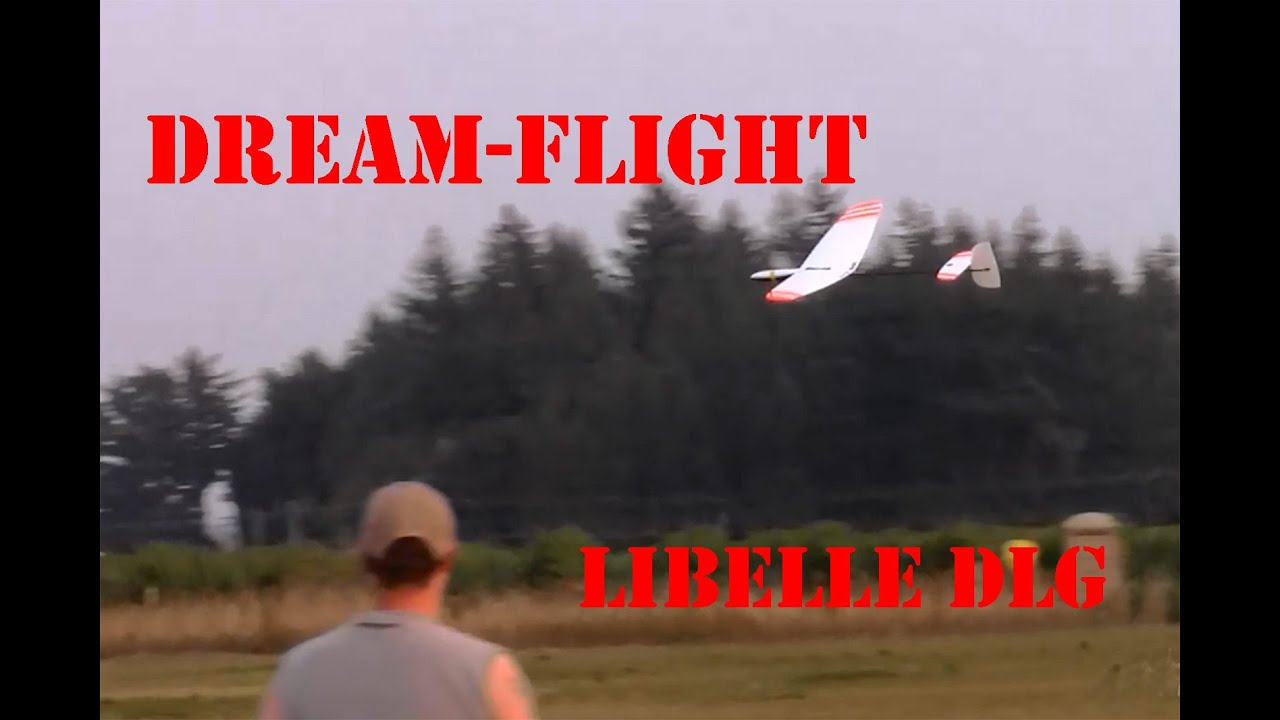 Dream-Flight Libelle DLG glider