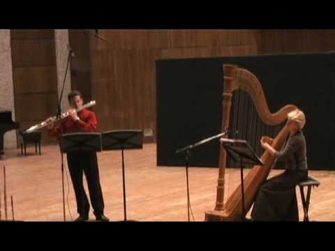 Yossi Hamami - The Western East - Bass Flute & Harp - Part 1