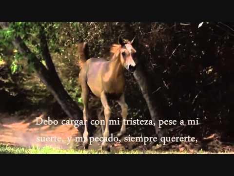 ESPINAS _ BRONCO CON ( LETRA)