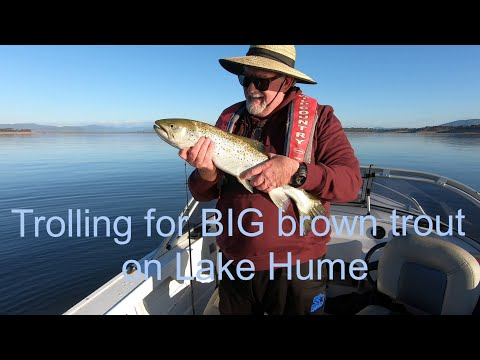 Trolling For BIG Brown Trout On Lake Hume