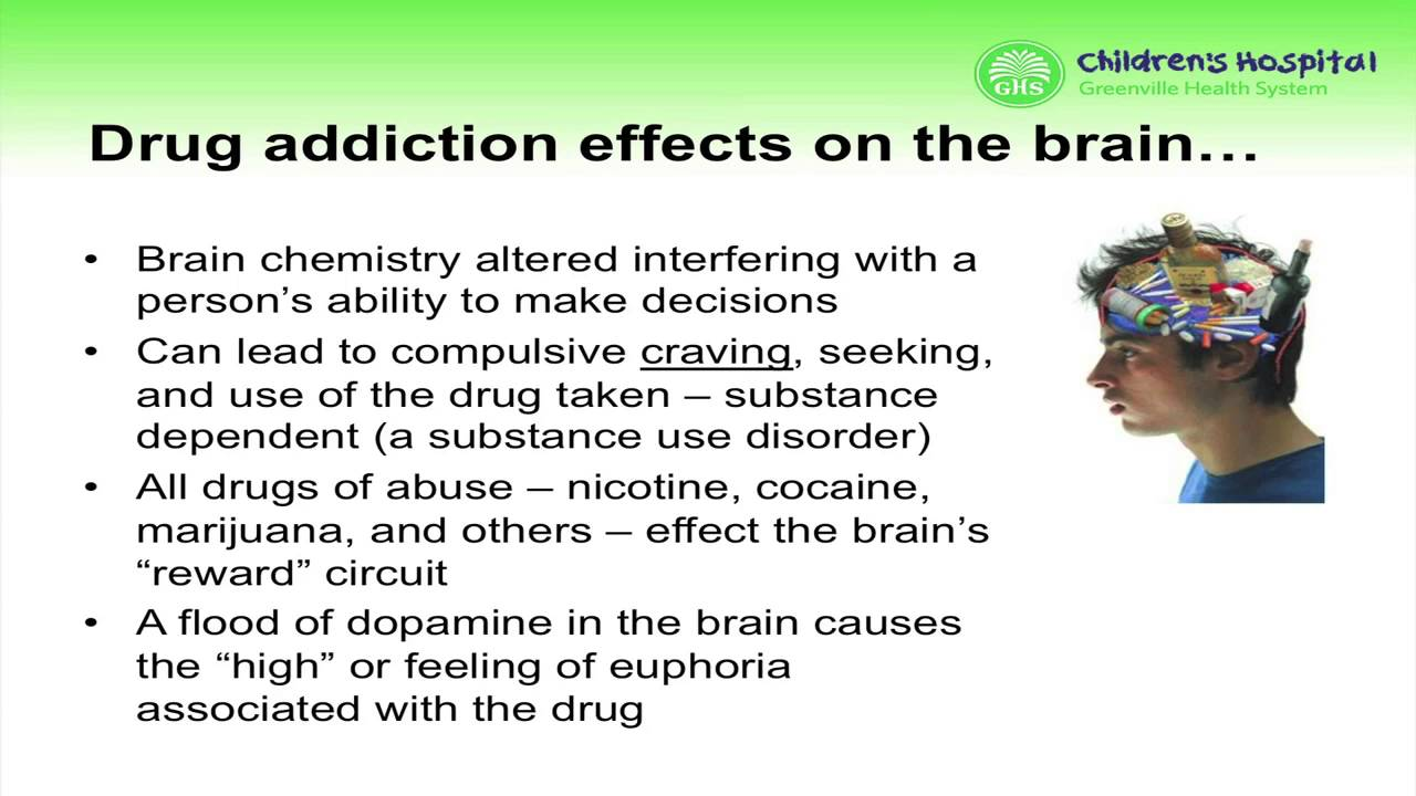 addiction and the reward circuit essay Please note: these are the uncorrected proofs of the article do not quote from this version for the formal, published version, please visit the journal website: http:// musejhuedu/journal/164 addicted to love what is love addiction and when should it.