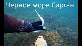 Подводная охота на Саргана.Черное море осень 2017. Видео 4k