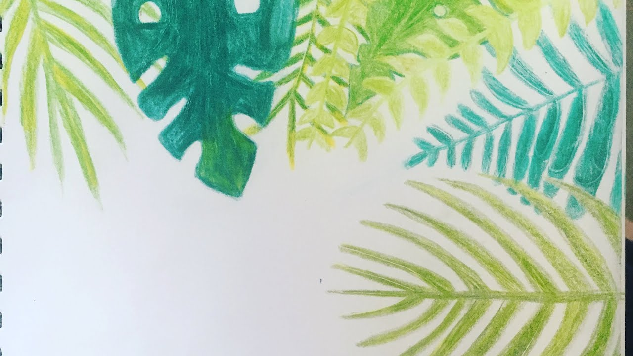 How To Draw Tropical Leaves Youtube Download premium png of hand drawn tropical leaves png transparent. how to draw tropical leaves
