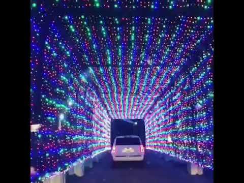daytona international speedway magic of lights holiday display