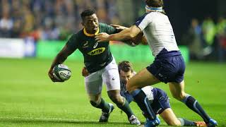 Rugby Scotland vs South Africa Analysis