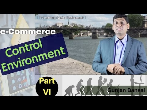 E-Commerce : Control Environment