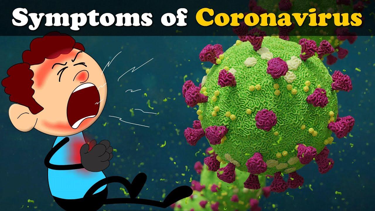 Symptoms of Coronavirus   COVID-19   #aumsum #kids #science #education #children