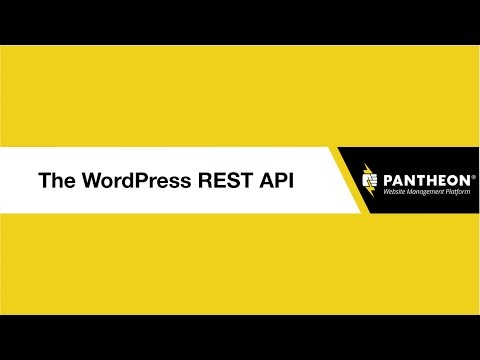 WordPress REST API: Expert Advice &...