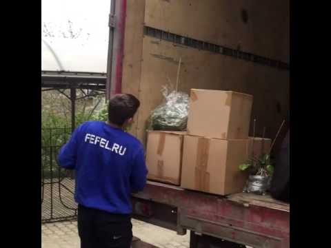Разборка беседки, упаковка в транспортный пакет.